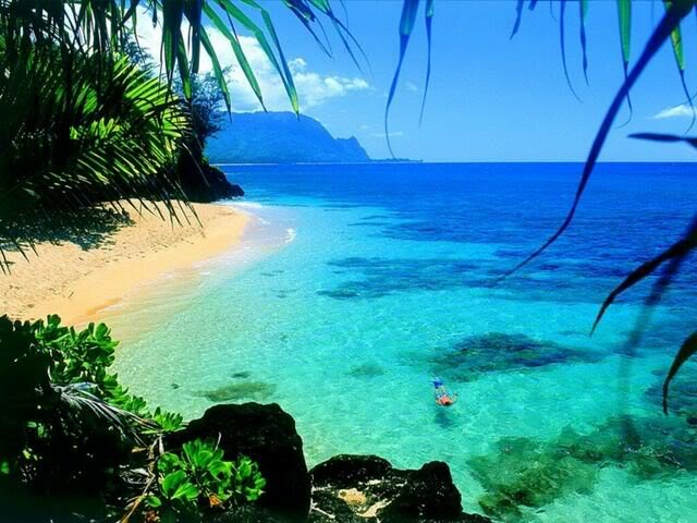 The Most Beautiful Islands In The World Sector Definition