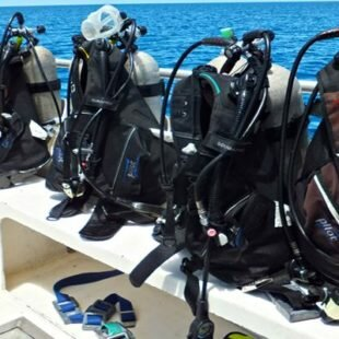 What are the the Most Commonly Used Types of Buoyancy Devices